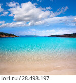 Купить «Ibiza Cala Bassa beach with turquoise Mediterranean sea at Balearic Islands», фото № 28498197, снято 7 июня 2013 г. (c) Ingram Publishing / Фотобанк Лори
