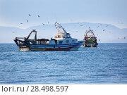 Купить «Trawler boats with seagulls in Ibiza Formentera islands», фото № 28498597, снято 3 июня 2013 г. (c) Ingram Publishing / Фотобанк Лори