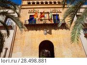 Купить «Elche Elx Alicante Ayuntamiento city town hall Valencian Community of Spain», фото № 28498881, снято 4 октября 2008 г. (c) Ingram Publishing / Фотобанк Лори
