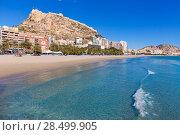 Alicante Postiguet beach and castle Santa Barbara in Spain Valencian Community (2014 год). Стоковое фото, фотограф Tono Balaguer / Ingram Publishing / Фотобанк Лори