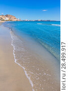 Купить «Alicante Postiguet beach and castle Santa Barbara in Spain Valencian Community», фото № 28499917, снято 21 января 2014 г. (c) Ingram Publishing / Фотобанк Лори