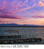 Купить «Albufera sunset lake park in Valencia el saler colorful sky of Spain», фото № 28500189, снято 5 ноября 2013 г. (c) Ingram Publishing / Фотобанк Лори