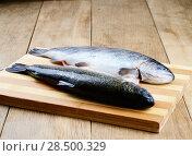 Купить «Two raw trout set on the kitchen table», фото № 28500329, снято 20 марта 2013 г. (c) Ingram Publishing / Фотобанк Лори