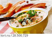 Homemade Thanksgiving Rustic Pumpkin Soup puree in ceramic Bowl. Стоковое фото, фотограф Olena Mykhaylova / Ingram Publishing / Фотобанк Лори