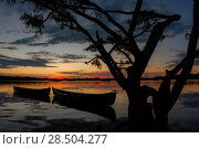 Купить «Two boats moored on the Cuyabeno Lagoon, silhouetted at sunset, Cuyabeno, Sucumbios, Ecuador, October 2014.», фото № 28504277, снято 19 июня 2018 г. (c) Nature Picture Library / Фотобанк Лори