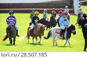 Купить «Pictured this afternoon - 17/10/16 Forget about the Grand National – the biggest horse-racing event on the calendar in Sussex starred junior jockeys racing...», фото № 28507185, снято 17 октября 2016 г. (c) age Fotostock / Фотобанк Лори