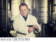Купить «Wine maker controls quality of wine», фото № 28513961, снято 12 октября 2016 г. (c) Яков Филимонов / Фотобанк Лори