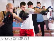 Купить «Glad people practicing boxing punches», фото № 28529781, снято 5 мая 2017 г. (c) Яков Филимонов / Фотобанк Лори