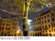 Купить «Night winter Rynok Square in Lviv city, Ukraine», фото № 28530589, снято 4 февраля 2018 г. (c) Юрий Брыкайло / Фотобанк Лори