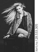 Купить «Fashion blond woman with flying hair wearing fur jacket. Studio dark background», фото № 28533305, снято 14 ноября 2015 г. (c) Ingram Publishing / Фотобанк Лори
