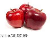 Купить «Три красных спелых яблока на белом фоне», фото № 28537169, снято 15 ноября 2017 г. (c) Сергей Васильев / Фотобанк Лори
