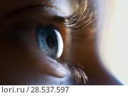 Купить «Close-up of beautiful little girl blue eye. Macro photograph.», фото № 28537597, снято 5 августа 2017 г. (c) Ingram Publishing / Фотобанк Лори