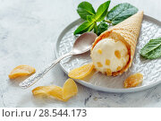 Купить «Ginger ice cream with slices of candied ginger», фото № 28544173, снято 15 мая 2018 г. (c) Марина Сапрунова / Фотобанк Лори