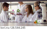 Купить «students and teacher with plant at biology class», видеоролик № 28544245, снято 28 мая 2018 г. (c) Syda Productions / Фотобанк Лори
