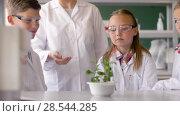 Купить «students and teacher with plant at biology class», видеоролик № 28544285, снято 28 мая 2018 г. (c) Syda Productions / Фотобанк Лори