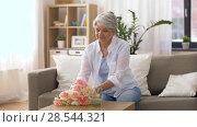 Купить «happy senior woman putting flowers to vase at home», видеоролик № 28544321, снято 29 мая 2018 г. (c) Syda Productions / Фотобанк Лори