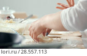 Купить «Female hands forms homemade pancakes from cottage cheese», видеоролик № 28557113, снято 17 июля 2019 г. (c) Константин Шишкин / Фотобанк Лори