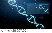 Купить «3d rendering of virtual dna molecule over black», видеоролик № 28567501, снято 24 августа 2019 г. (c) Syda Productions / Фотобанк Лори