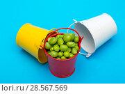 Купить «Натюрморт с вёдрами и зелёным горошком на голубом фоне», фото № 28567569, снято 4 июня 2018 г. (c) V.Ivantsov / Фотобанк Лори