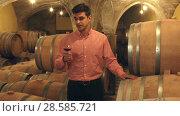 Купить «Handsome man posing among wooden barrels in winery cellar», видеоролик № 28585721, снято 1 октября 2016 г. (c) Яков Филимонов / Фотобанк Лори