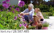 Купить «grandmother and girl study flowers at garden», видеоролик № 28587485, снято 11 июня 2018 г. (c) Syda Productions / Фотобанк Лори