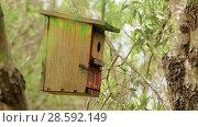 Купить «Small wooden birdhouse hanging on tree», видеоролик № 28592149, снято 29 января 2018 г. (c) BestPhotoStudio / Фотобанк Лори