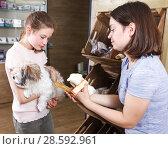 Купить «girl with mother visiting pet shop in search of treats», фото № 28592961, снято 3 мая 2018 г. (c) Яков Филимонов / Фотобанк Лори