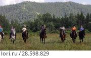 Купить «Всадники практикуют выездку лошадей в поле. Riders practice dressage horse in the field.», видеоролик № 28598829, снято 21 ноября 2015 г. (c) Евгений Романов / Фотобанк Лори