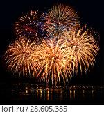 Купить «Celebratory firework in a night sky», фото № 28605385, снято 23 июля 2019 г. (c) ElenArt / Фотобанк Лори