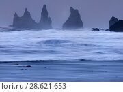 Купить «Stormy day with view of Reynisdrangar from Vik beach, southern Iceland, February 2015», фото № 28621653, снято 15 августа 2018 г. (c) Nature Picture Library / Фотобанк Лори