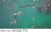 Купить «Underwater view of people snorkeling in Andaman Sea», видеоролик № 28626773, снято 3 июня 2018 г. (c) Игорь Жоров / Фотобанк Лори