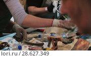 Купить «Recycling of garbage Cardboard paper production», видеоролик № 28627349, снято 14 июня 2018 г. (c) Aleksejs Bergmanis / Фотобанк Лори