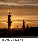 Купить «Ростральные колонны. Санкт-Петербург», эксклюзивное фото № 28628661, снято 23 июня 2018 г. (c) Александр Щепин / Фотобанк Лори