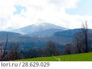 Купить «Forest Park in spring», фото № 28629029, снято 8 апреля 2018 г. (c) Ольга Марк / Фотобанк Лори