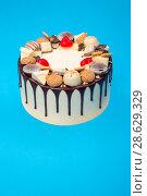 Купить «Большой праздничный торт на синем фоне», фото № 28629329, снято 21 июня 2018 г. (c) V.Ivantsov / Фотобанк Лори