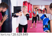 Купить «mature woman who is training with punching bag», фото № 28629849, снято 8 октября 2017 г. (c) Яков Филимонов / Фотобанк Лори