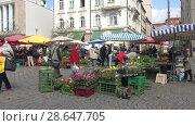 Купить «Весенняя ярмарка на рыночной площади Брно. Чехия», видеоролик № 28647705, снято 24 апреля 2018 г. (c) Виктор Карасев / Фотобанк Лори