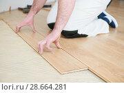 Купить «worker joining parquet floor.», фото № 28664281, снято 25 января 2018 г. (c) Дмитрий Калиновский / Фотобанк Лори