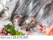 Купить «fresh fish on ice at grocery stall», фото № 28675001, снято 2 ноября 2016 г. (c) Syda Productions / Фотобанк Лори