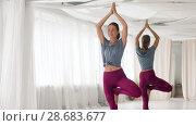 Купить «young woman doing yoga tree pose at studio», видеоролик № 28683677, снято 28 июня 2018 г. (c) Syda Productions / Фотобанк Лори
