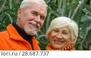 Купить «Cheerful positive elderly couple», фото № 28687737, снято 4 ноября 2017 г. (c) Владимир Белобаба / Фотобанк Лори