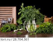 Купить «Dill and parsley in jug of water, near greens, isolated on black», фото № 28704361, снято 14 мая 2018 г. (c) Сергей Молодиков / Фотобанк Лори
