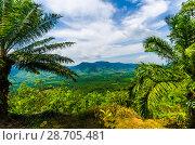 Купить «Живописный вид с горы на поля, джунгли и и долину Краби, Таиланд», фото № 28705481, снято 17 февраля 2013 г. (c) Игорь Рожков / Фотобанк Лори