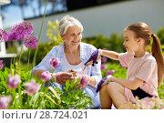 Купить «grandmother and girl planting flowers at garden», фото № 28724021, снято 3 июня 2018 г. (c) Syda Productions / Фотобанк Лори