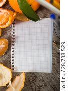 Купить «leaf notebook by fruit», фото № 28738529, снято 22 июля 2018 г. (c) Яков Филимонов / Фотобанк Лори