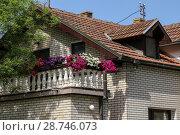Купить «Украшение балконов цветами. Петуния», фото № 28746073, снято 30 апреля 2018 г. (c) ok_fotoday / Фотобанк Лори