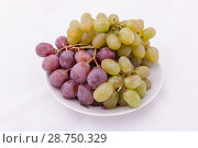 Купить «Bunches of purple and green grapes», фото № 28750329, снято 20 мая 2009 г. (c) Argument / Фотобанк Лори