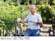 Older man proud of his garden. Стоковое фото, фотограф Яков Филимонов / Фотобанк Лори