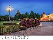 Купить «Цветы на Сенатской площади Flowers and a lantern on the Senate Square», фото № 28753213, снято 4 июня 2018 г. (c) Baturina Yuliya / Фотобанк Лори