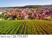 View of Esslingen with vineyards from Dicker Turm (2017 год). Стоковое фото, фотограф Сергей Новиков / Фотобанк Лори